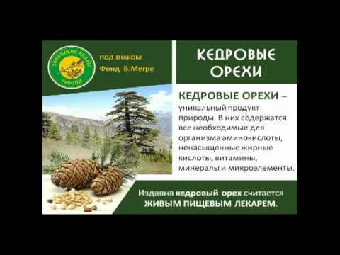 Кедровое масло и Живица Кедра Сибирского