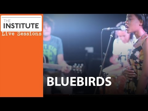 Institute Live Sessions - The Bluebirds