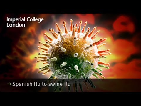 Spanish Flu to Swine Flu
