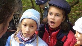 Лесные уроки в начальной школе - развитие речи