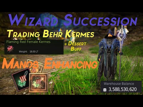 Part 21 | Wizard Succession Gameplay | Behr Kermes Trade | Manos Accessories Enhancing | Daily Dose