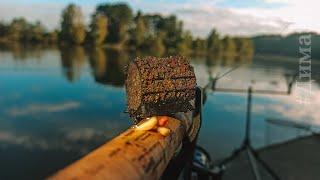 Одиночная рыбалка на РЕКЕ с ночёвкой. ЛЕЩ на ФИДЕР. Эксперимент ПРИКОРМКА на леща. Как ловить ЛЕЩА