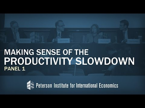 Conference: Making Sense of the Productivity Slowdown, Panel 1