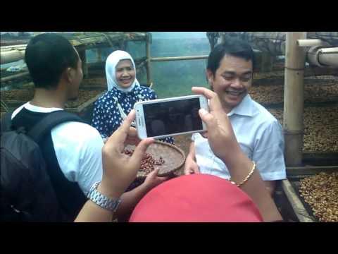 KOPI GUNUNG PUNTANG BANDUNG INDONESIA TERBAIK DUNIA