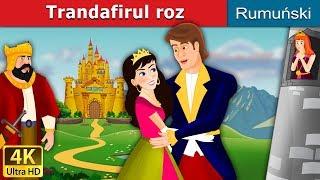 Trandafirul roz | Povesti pentru copii | Romanian Fairy Tales