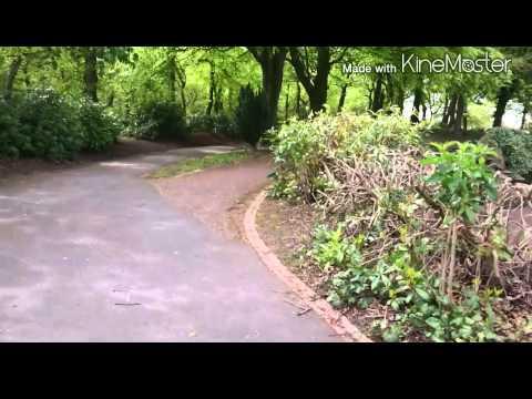 Beaumont Park 2015 - Our spring walk