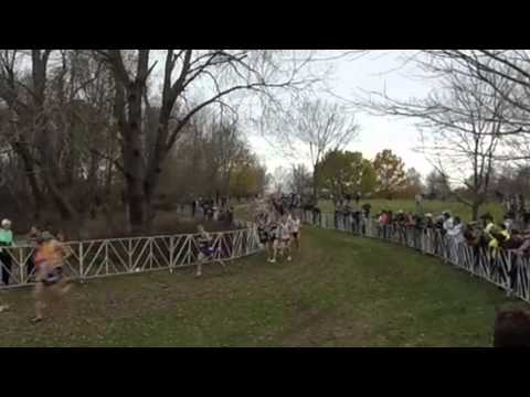 2015 Mens NCAA Cross Country Championships