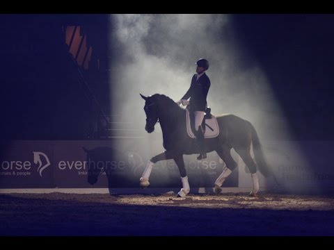 Will Rogers & Grandeur Total Trust Herning Horse Show 2017