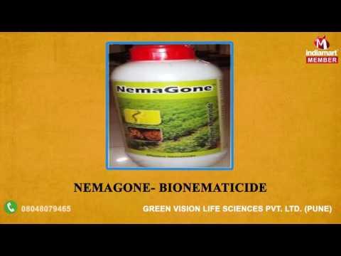 Fertiliser Products By Green Vision Life Sciences Pvt. Ltd., Pune