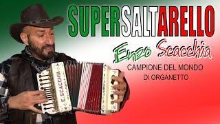 Supersaltarello (dal vivo Enzo Scacchia CAMPIONE DEL MONDO DI ORGANETTO) saltarello (Conejo Pérez)