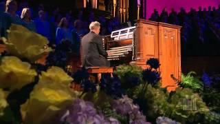 popular organist organ videos