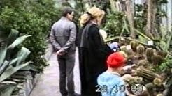 Hesan kaupunginpuutarha 10/1989