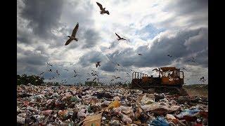 Тверская область отказалась принимать мусор из Москвы