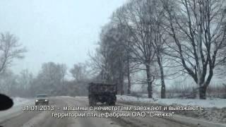 Слив машин с нечистотами на участки жителей Брянска