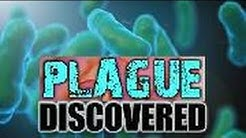 Health Alert! Fleas Test Positive for 'Plague' Near Flagstaff, Arizona!