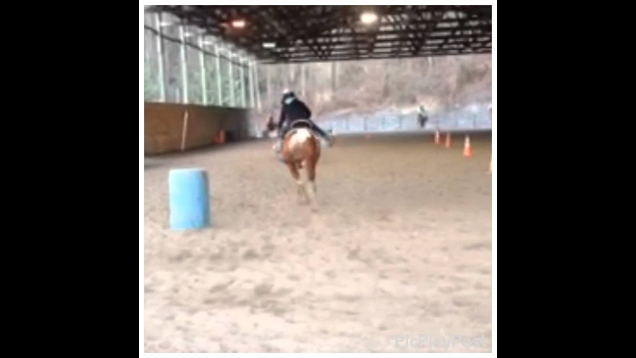 Speed barrels~ jubliee~langs horse and pony farm - YouTube