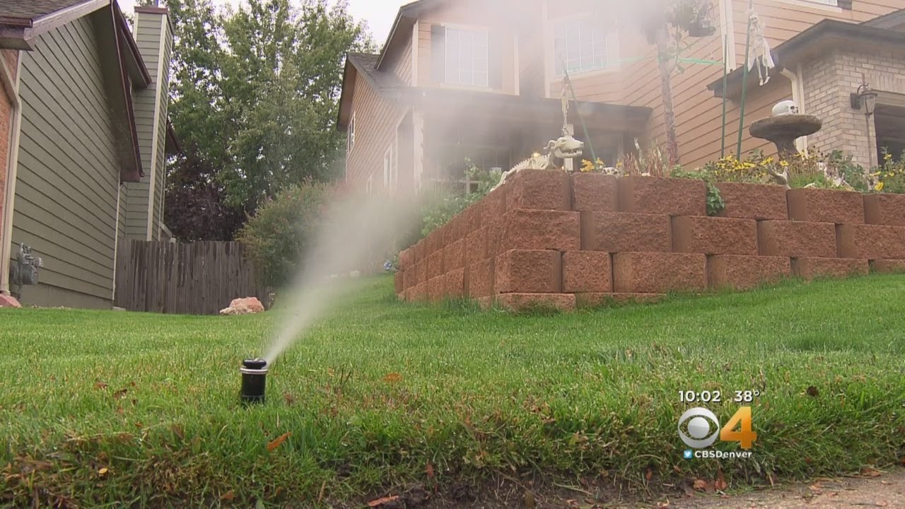 sprinkler-system-companies-flooded-with-calls-as-temperatures-drop