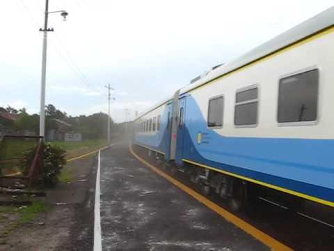 Tren chino de regreso de Mar del Plata...