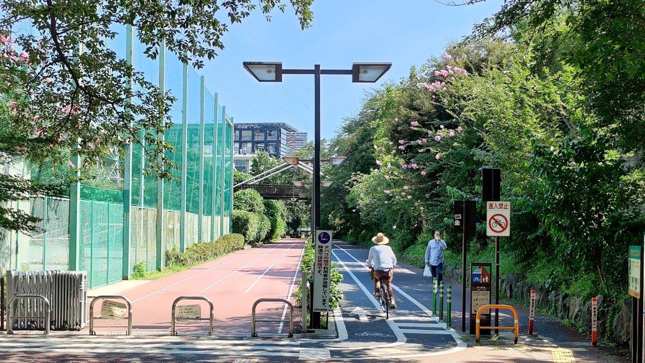 4K Tokyo Walk - Ookayama, Midorigaoka, Jiyugaoka - 大岡山 緑ヶ丘 自由が丘 - Green Roads in Meguro-ku