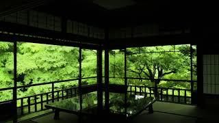 【瑠璃光院】 ここ「八瀬」の地は、「矢背」とも記されるように、 壬申...