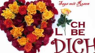 Rote Rosen für Dich
