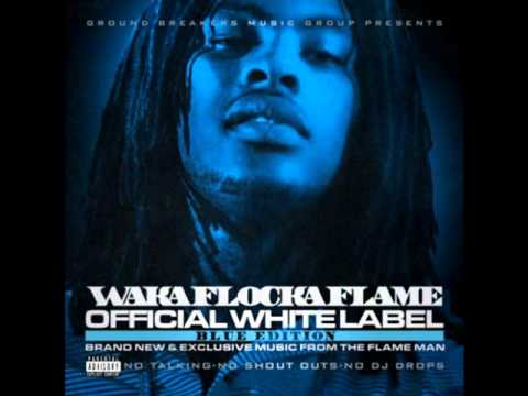 Waka Flocka Flame - Young Money Brick Squad