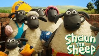 Shaun The Sheep Full Episodes | Shaun The Sheep 2017 Season 3 Episodes 11-20 | Shaun The Sheep HD