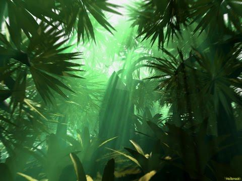 Tribal Jungle Music - Exotic Jungle