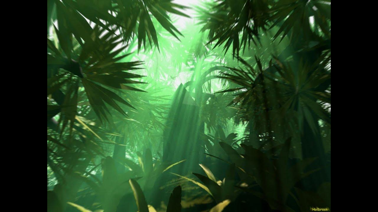 Tribal Jungle Music - Exotic Jungle - YouTube