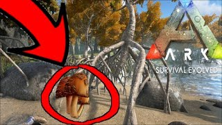 How to get RARE MUSHROOMS in ARK: Survival Evolved