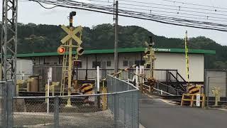 近鉄大阪線 名張 変な塗装踏切警報機 カラシ色 しまかぜ徐行
