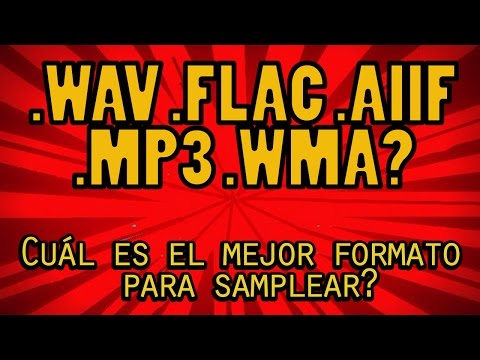 .WAV .AIIF .FLAC .MP3 .WMA What is the best audio format for sampling? Special 500 Susc