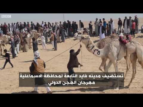 أناالشاهد: مهرجان الهجن الدولي بصحراء سرابيوم  - 11:54-2019 / 3 / 18