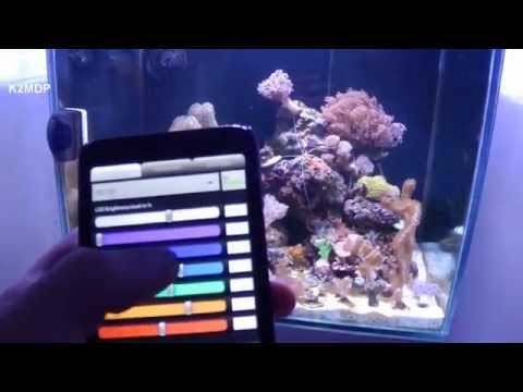 DIY Full spectrum led like Radion XR15W PRO