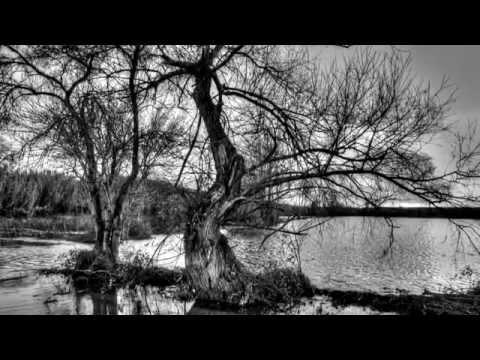 Milt Jackson & The Monty Alexander Trio - Once I Loved - Waterscapes P2 (B&W fotos de Luís Leitão)
