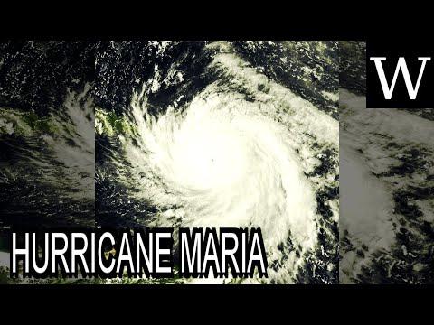 HURRICANE MARIA - WikiVidi Documentary