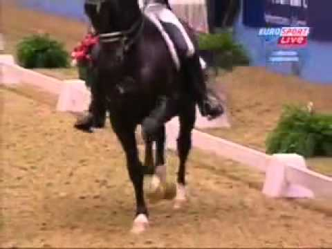 Edward Gal and Moorlands Totilas  KUR Olympia dressage London 16 12 2009    92 300%