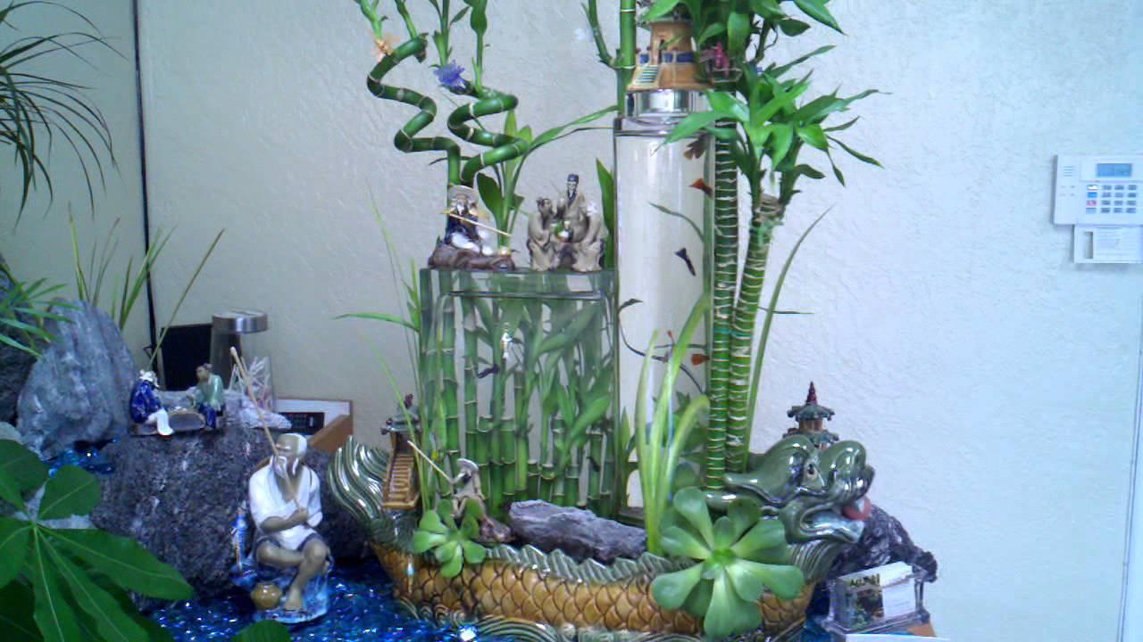 Lucky Bamboo Gravity Aquarium Inside Of A Dragon Youtube