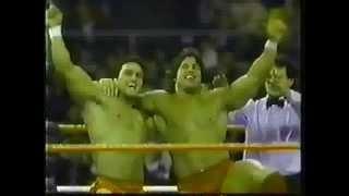 WWF Wrestling Challenge 1/16/88