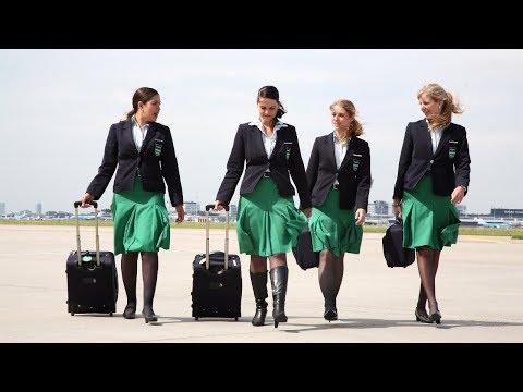 Werken als steward of stewardess?