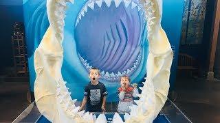 Kids Drive to Newport Aquarium|Crazy Animals