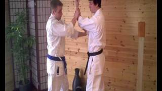 ESKK® Online Lesson 5: Training Drills From Pinan Sandan Kata