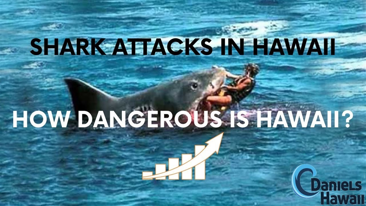 Shark Attack In Hawaii What Island In Hawaii Has Most
