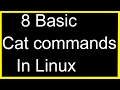 Basic Cat Commands in Linux