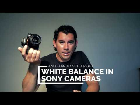 Cocos Island Vlog 001 / How to get better white balance on Sony underwater