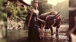 Baixar PHOTOGRAPHER VIKK SHAYEN Photoshoot for Cindy Wei Zhang Studio