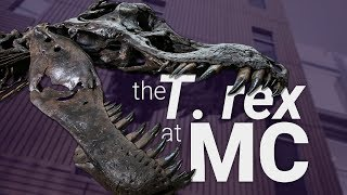 There's A T. Rex At MC! Learn About Science & Related Careers