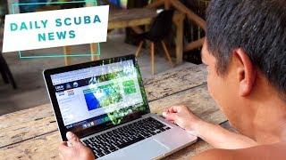 Daily Scuba News - Free eco courses for scuba divers