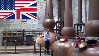 Whiskey Distillery Tour: Woodford Reserve