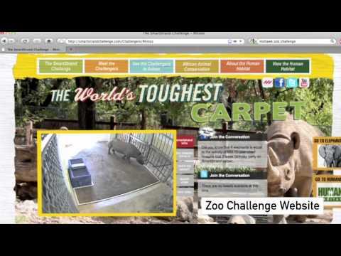 Mohawk Zoo Challenge.mov